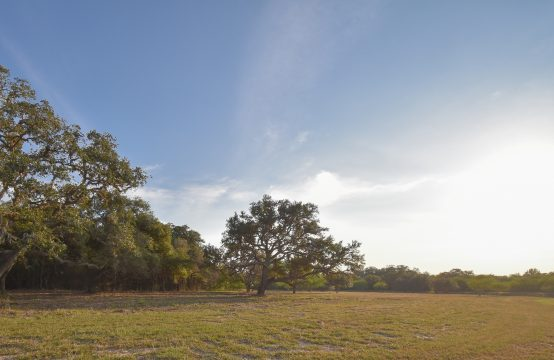 Lot 9, Tract 1 Post Oak Circle